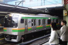 E217系湘南帯(品川駅・060323)