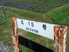 080723 きしゃにちゅうい:JR北海道富良野線 北15号踏切